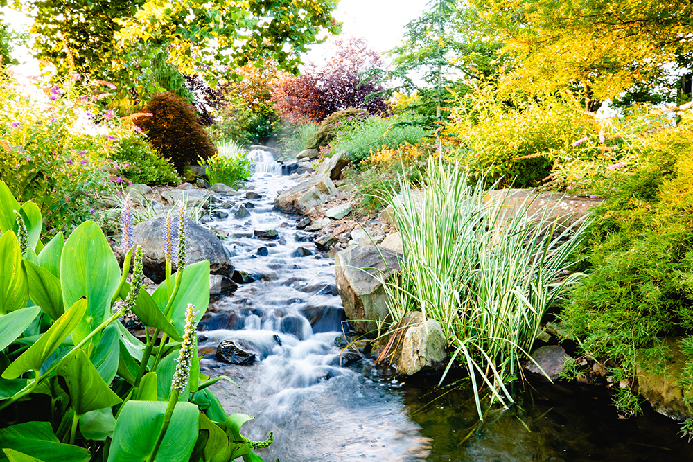 Eden Botanical Gardens