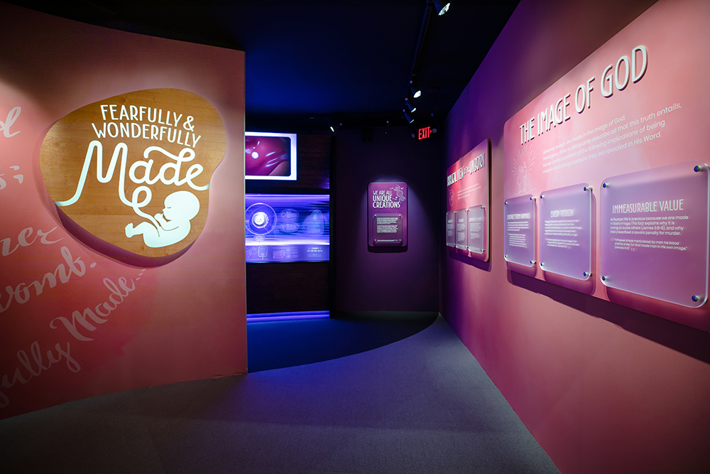 Fearfully and Wonderfully Made Exhibit