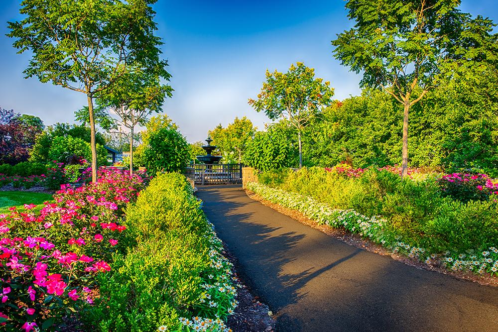 Botantical Gardens