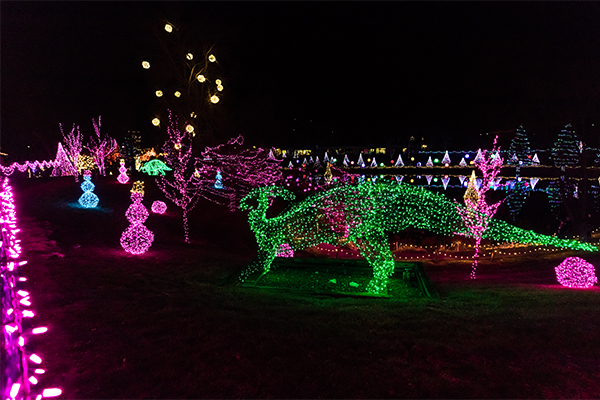 Buddy Davis Dinosaur in Lights