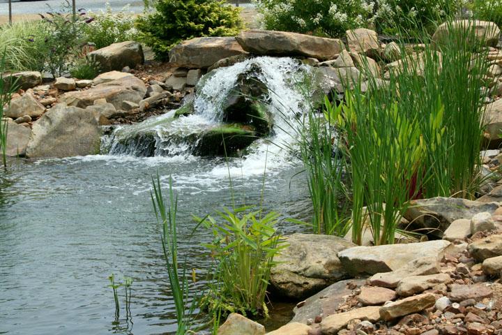 August Gardens