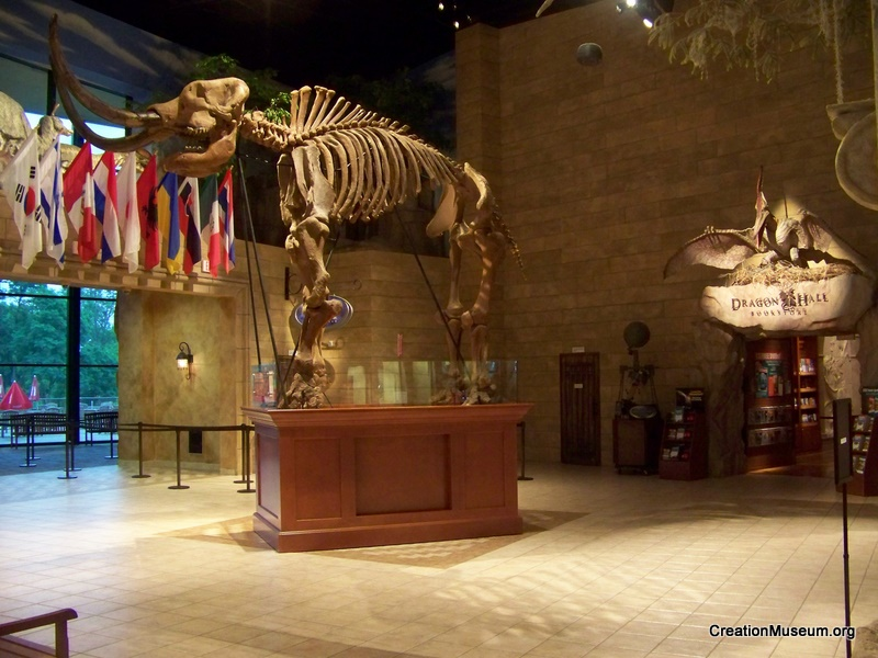 The Mastodon Has Arrived Creation Museum