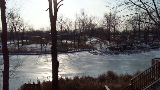 Winter at the Creation Museum