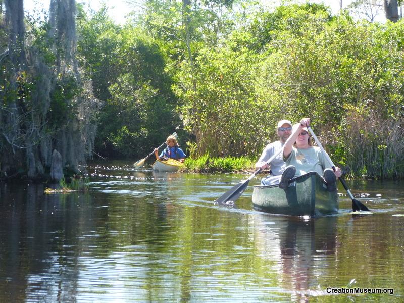 Swamp Trip