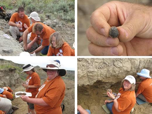 Dinosaur Fossil Diggers