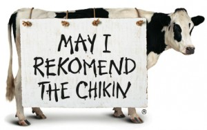 The famous Chick-fil-A cow!