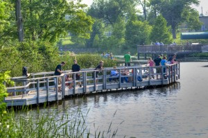 Fishing off the boardwalk