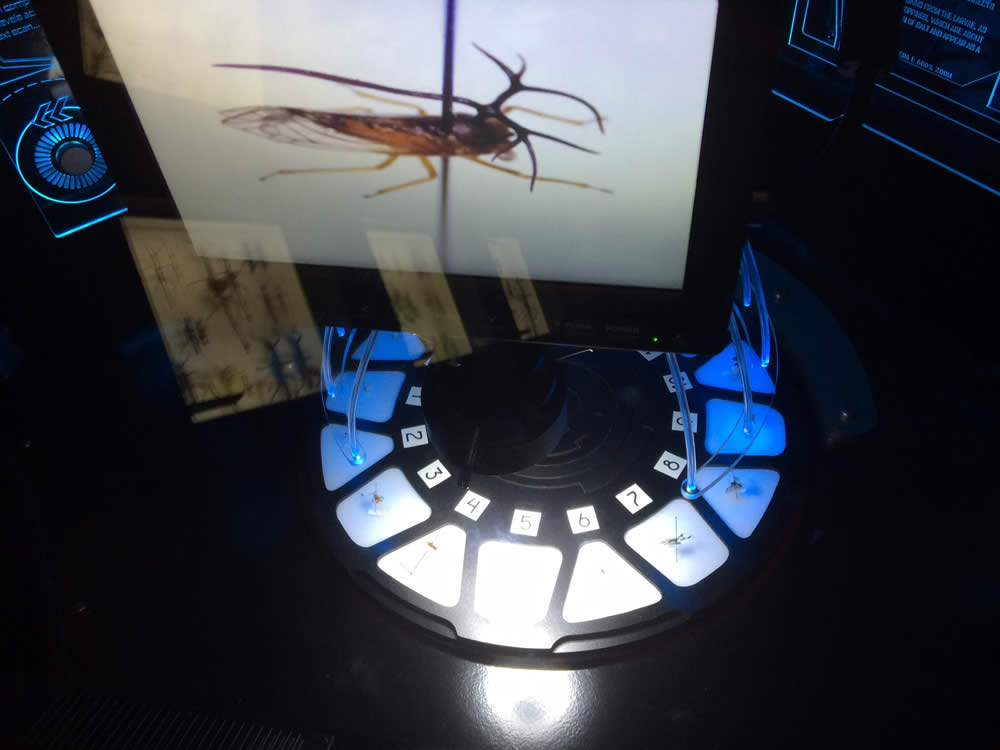 Insectorium microscope