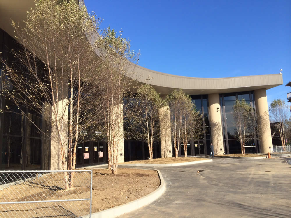 Grand Plaza Trees