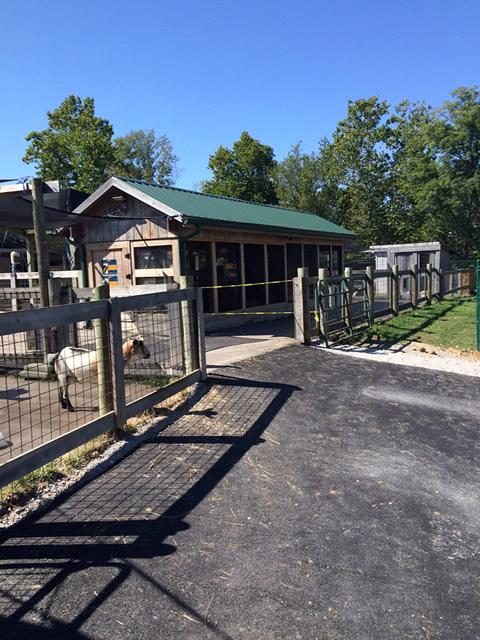 Petting Zoo Improvements