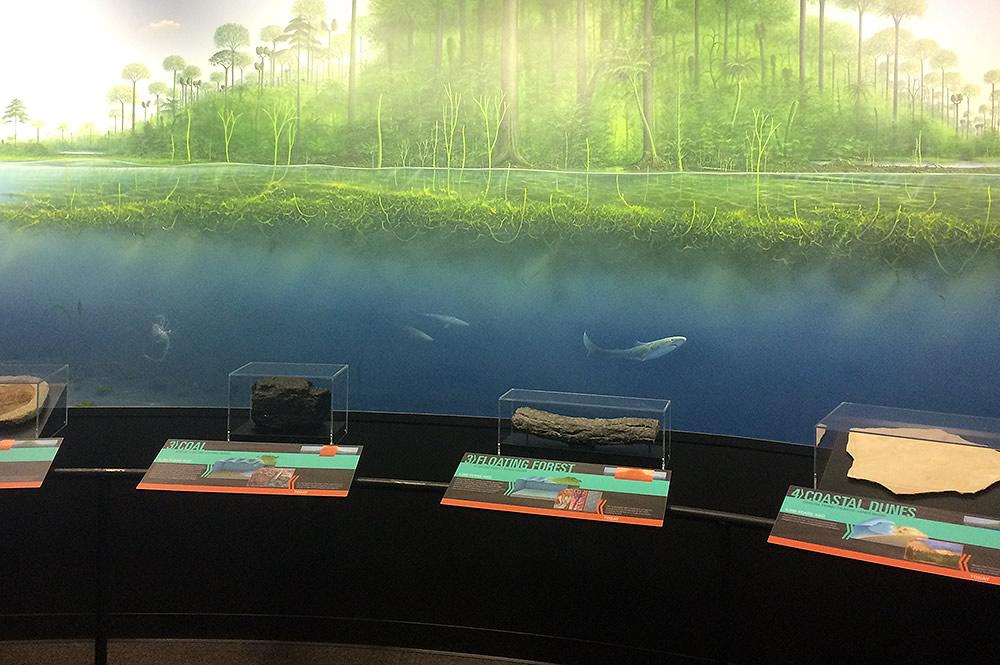 Flood Geology Room