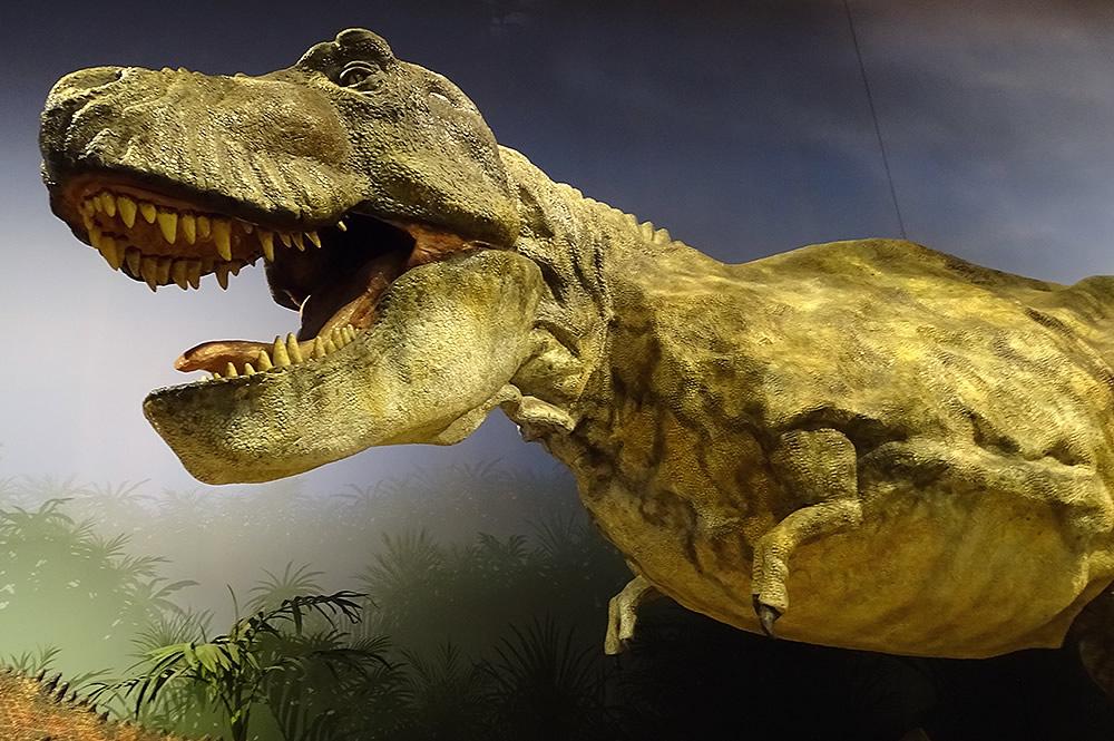T. rex Dino Den