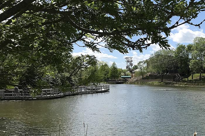 Lake During Spring