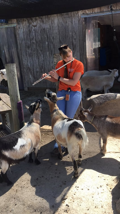 Goats with Flute