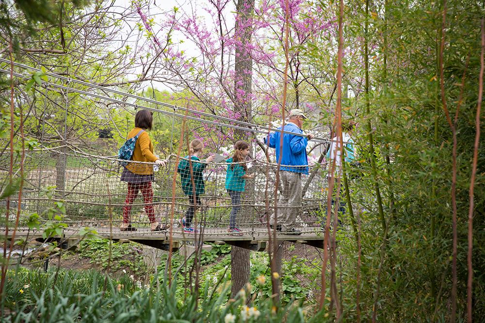 Family on Suspension Bridge in Creation Museum Botanical Gardens