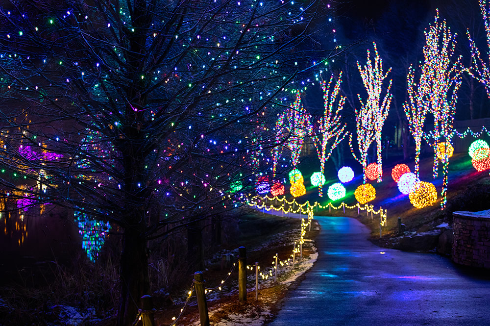 Garden of Lights at ChristmasTown
