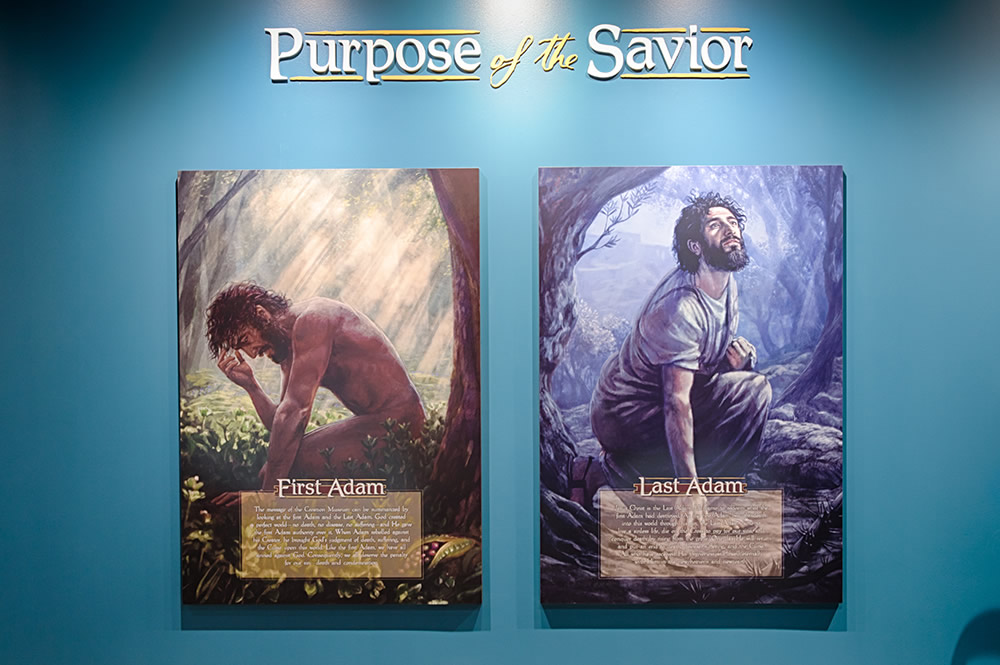 Purpose of the Savior