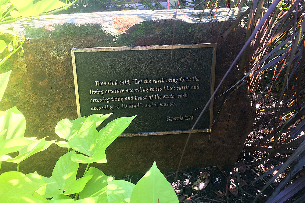Can you find these seven verses in the botanical gardens for Creation gardens