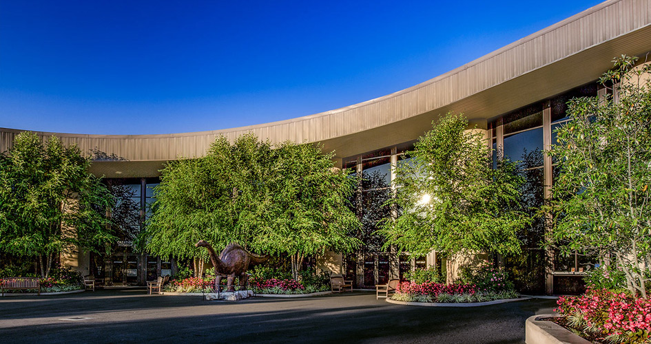 Creation Science | Creation Museum