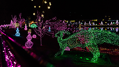Tour the Dazzling Garden of Lights at ChristmasTown at the Creation Museum