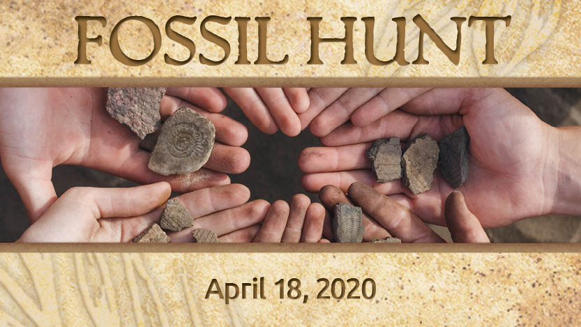 Hunt for Fossils with a Geologist and Paleontologist