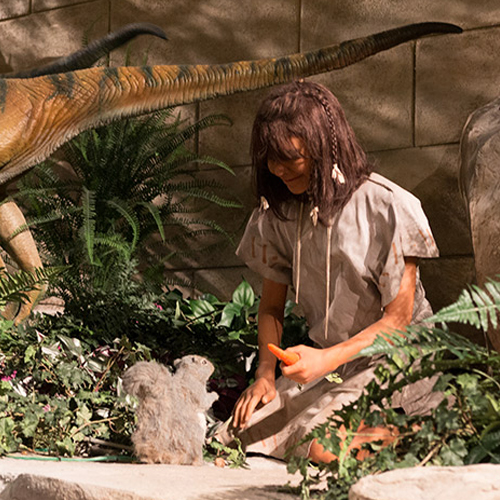Creation Museum Celebrates One Year