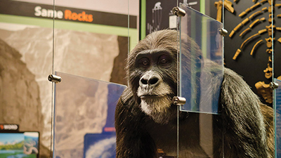"High-Tech ""Ape Man"" Exhibit Opens at Creation Museum"