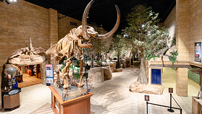 Join Us for an AiG Conference and Receive Admission to the Creation Museum