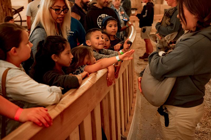 Dia Latino at the Ark Encounter
