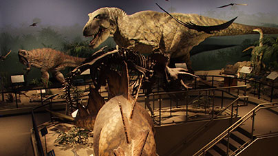 Exhibit - Dinosaur Den