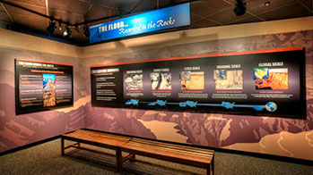 Exhibit - Flood Geology Room