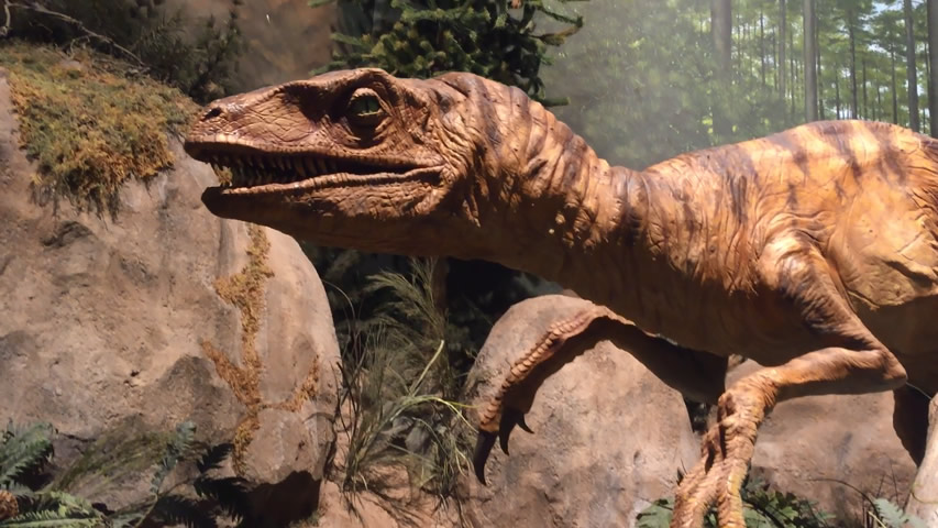 Animatronic Raptor at the Creation Museum