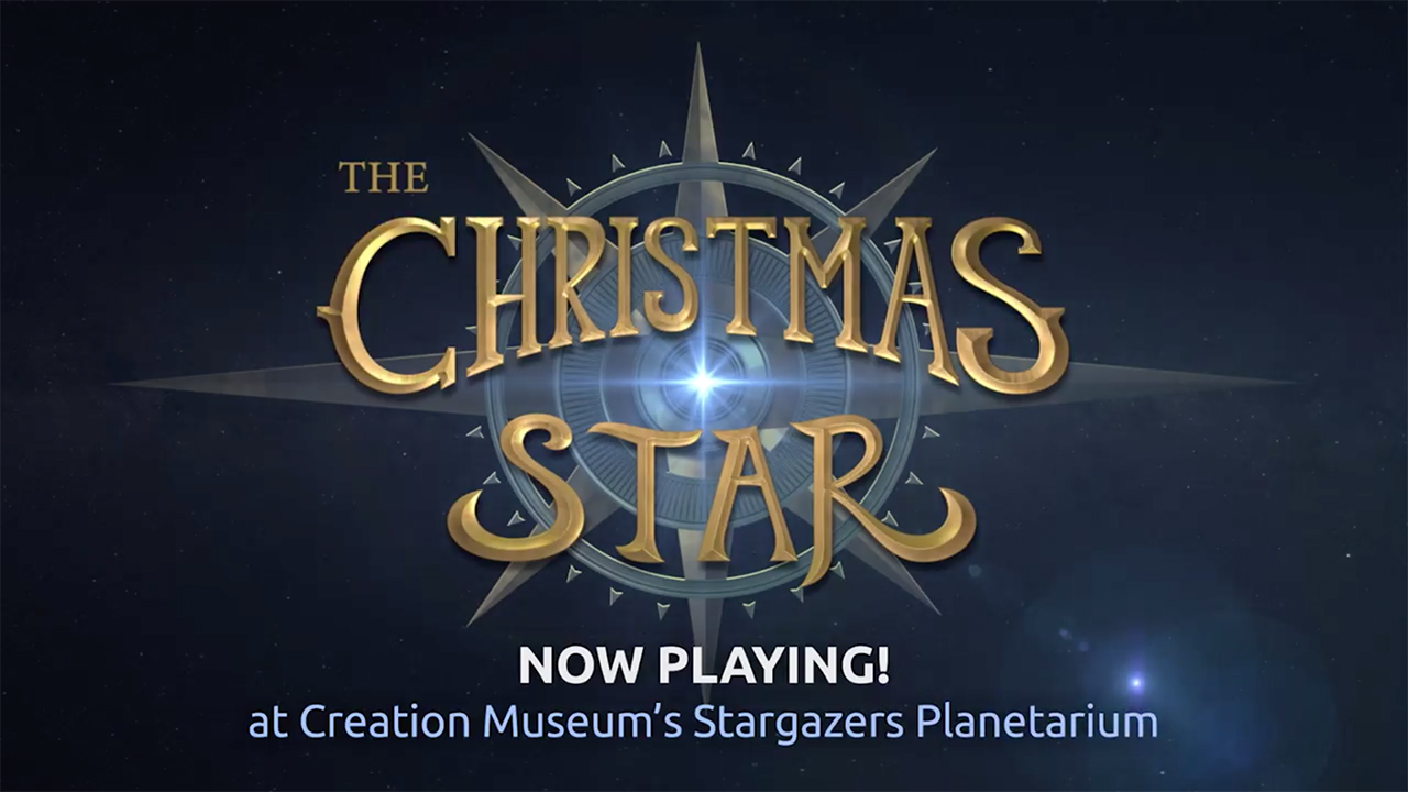 The Christmas Star 4K Promo 2020