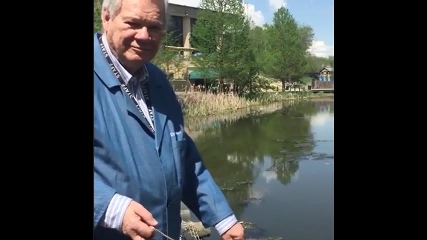 Dr. David Menton Gathers Pond Life