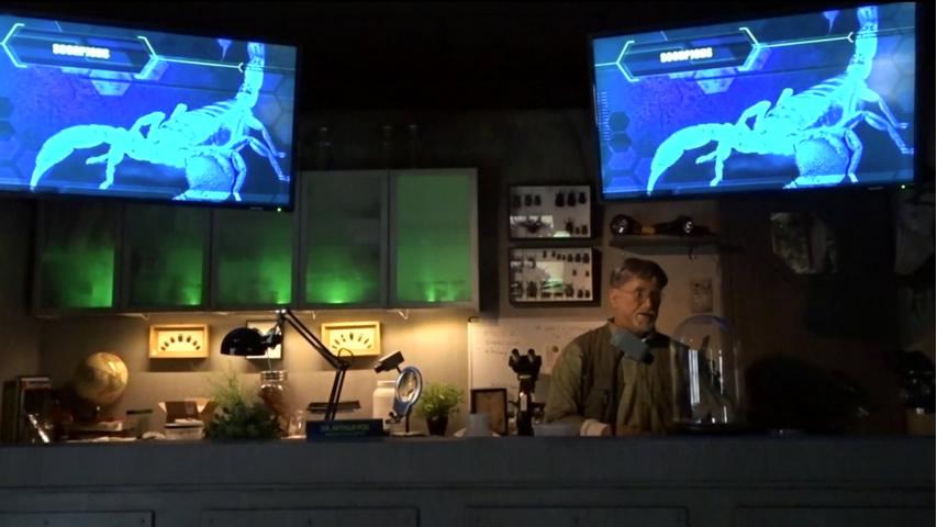 Creation Museum Insectorium: Scorpion