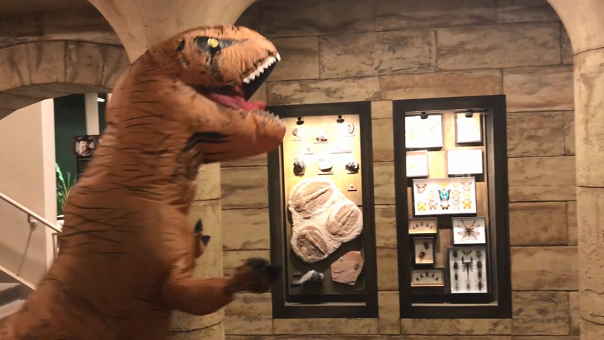 Creation Museum Blog: T-rex Thankful for God's Creation