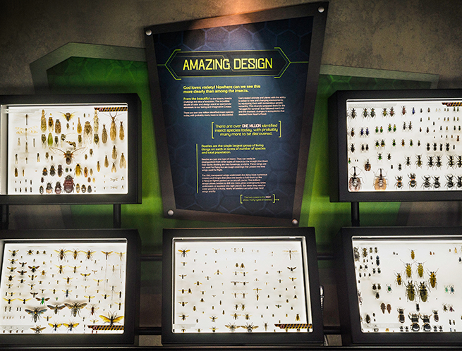 About The Creation Museum Creation Museum