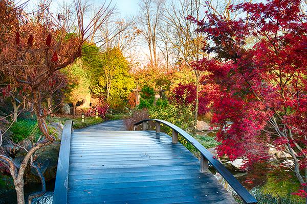 Botanical Gardens in Fall